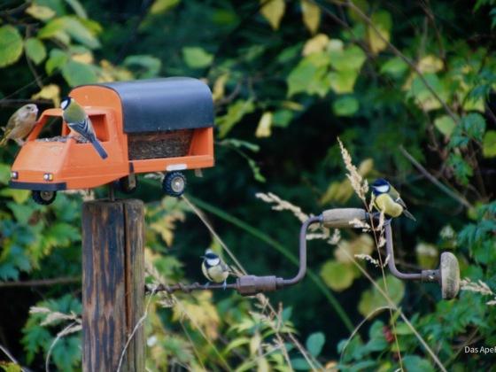 Ape P2 als Vogelhaus
